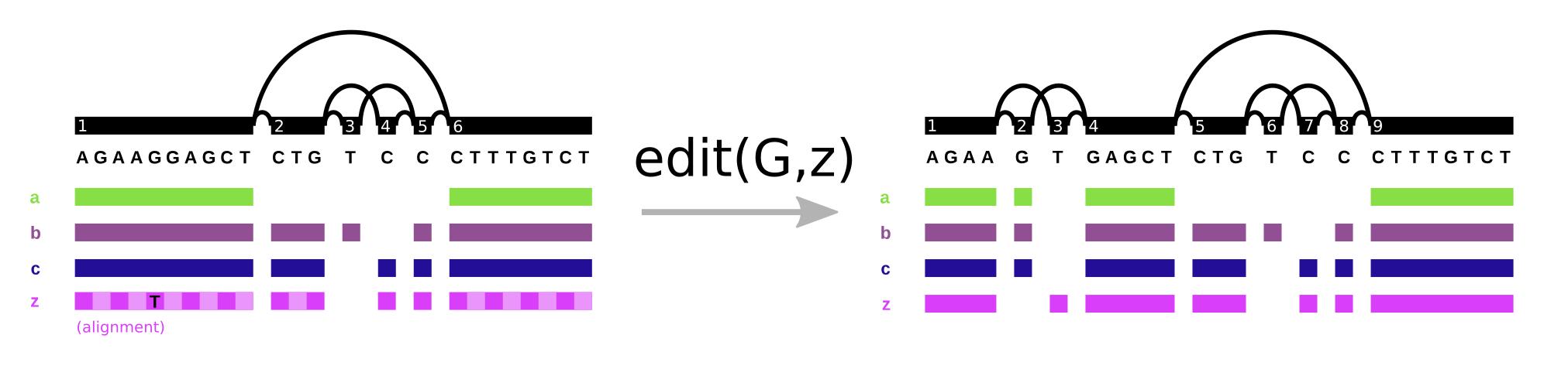 Editing a variation graph
